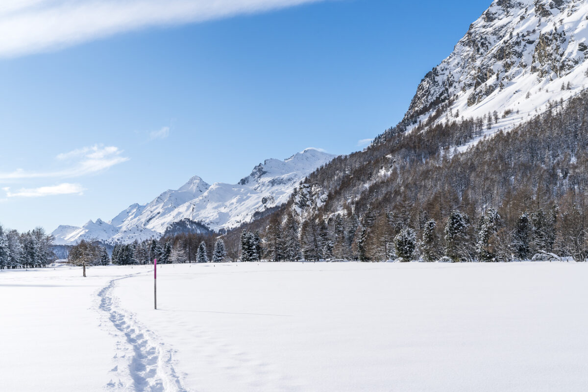 Engadin Sils Maria Schneeschuhwandern