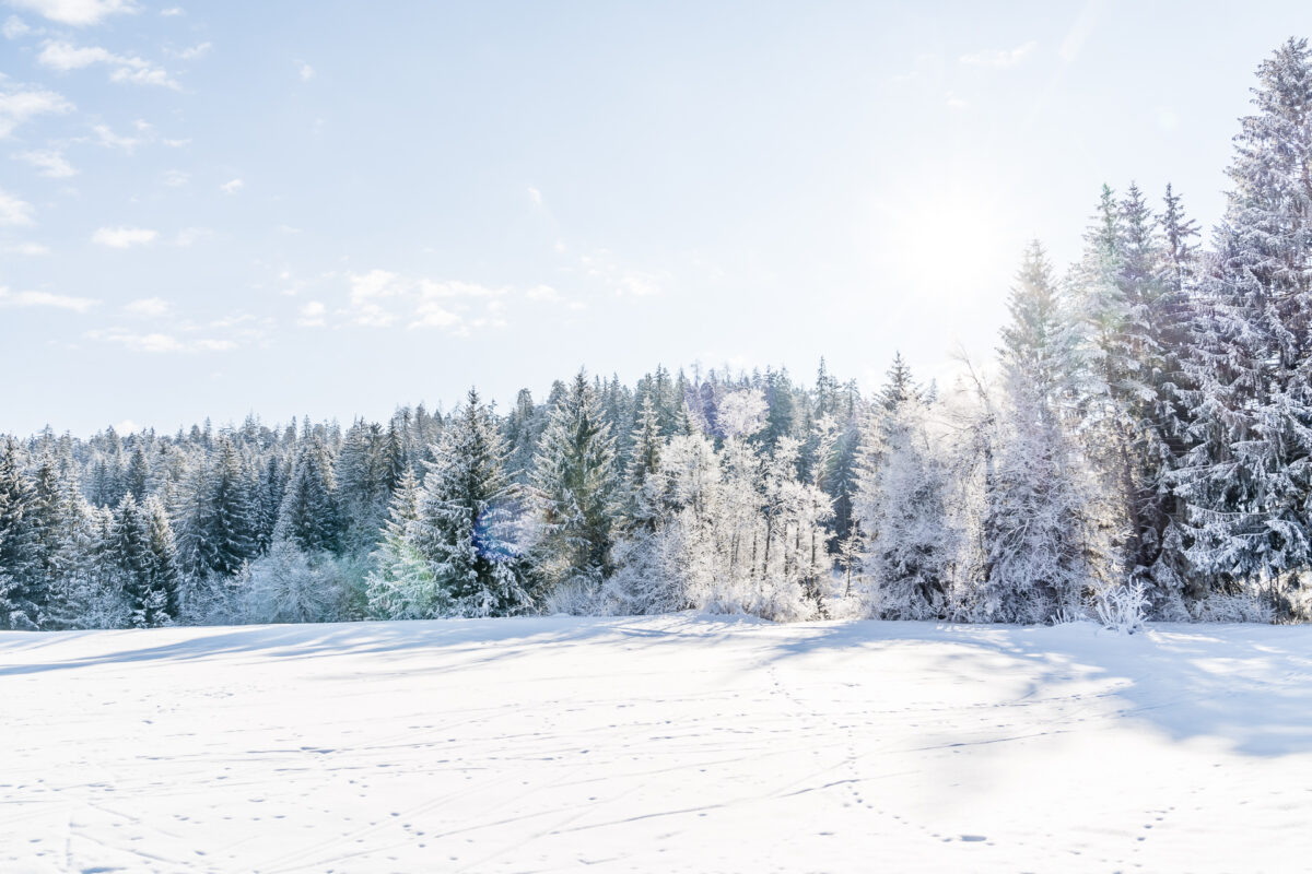 Winterlandschaft Trin Mulin