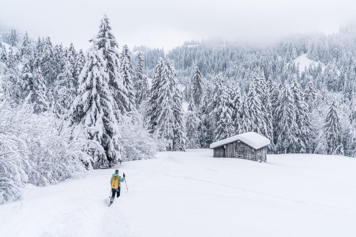 Schneeschuhwandern Herrenboden
