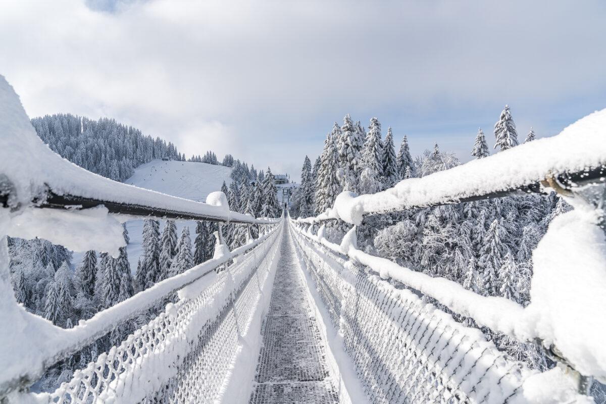 Skywalk Sattel-Hochstuckli Winter