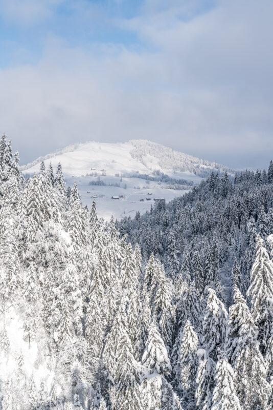 Winterlicher Skywalk Aussicht