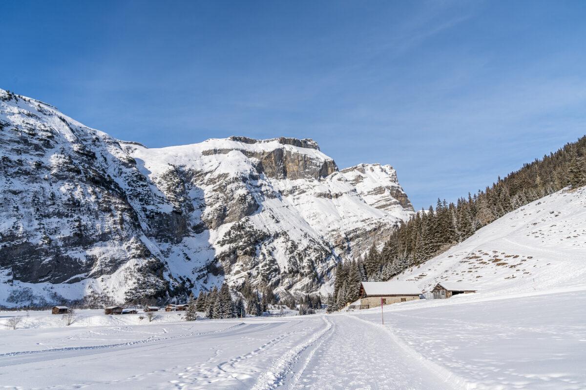 Bargis-Rundweg Winter