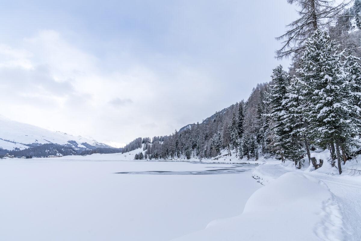 Winterwanderweg Silvaplana-Sils