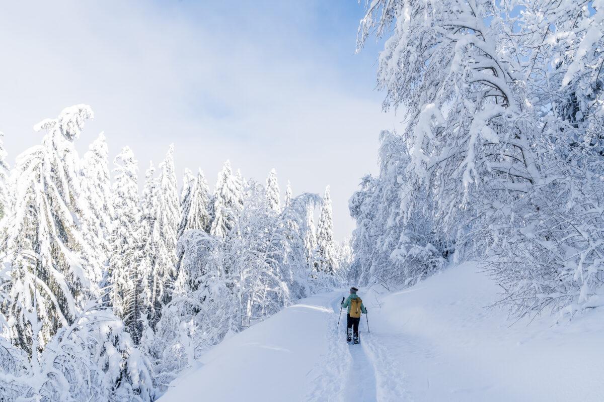 Herrenboden-Biberegg Schneeschuhtrail