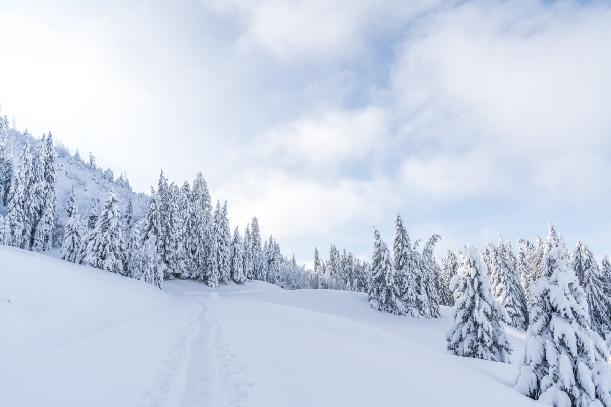Winterlandschaft Biberegg