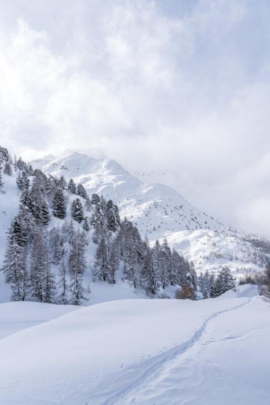 Fex Sils Winterlandschaft