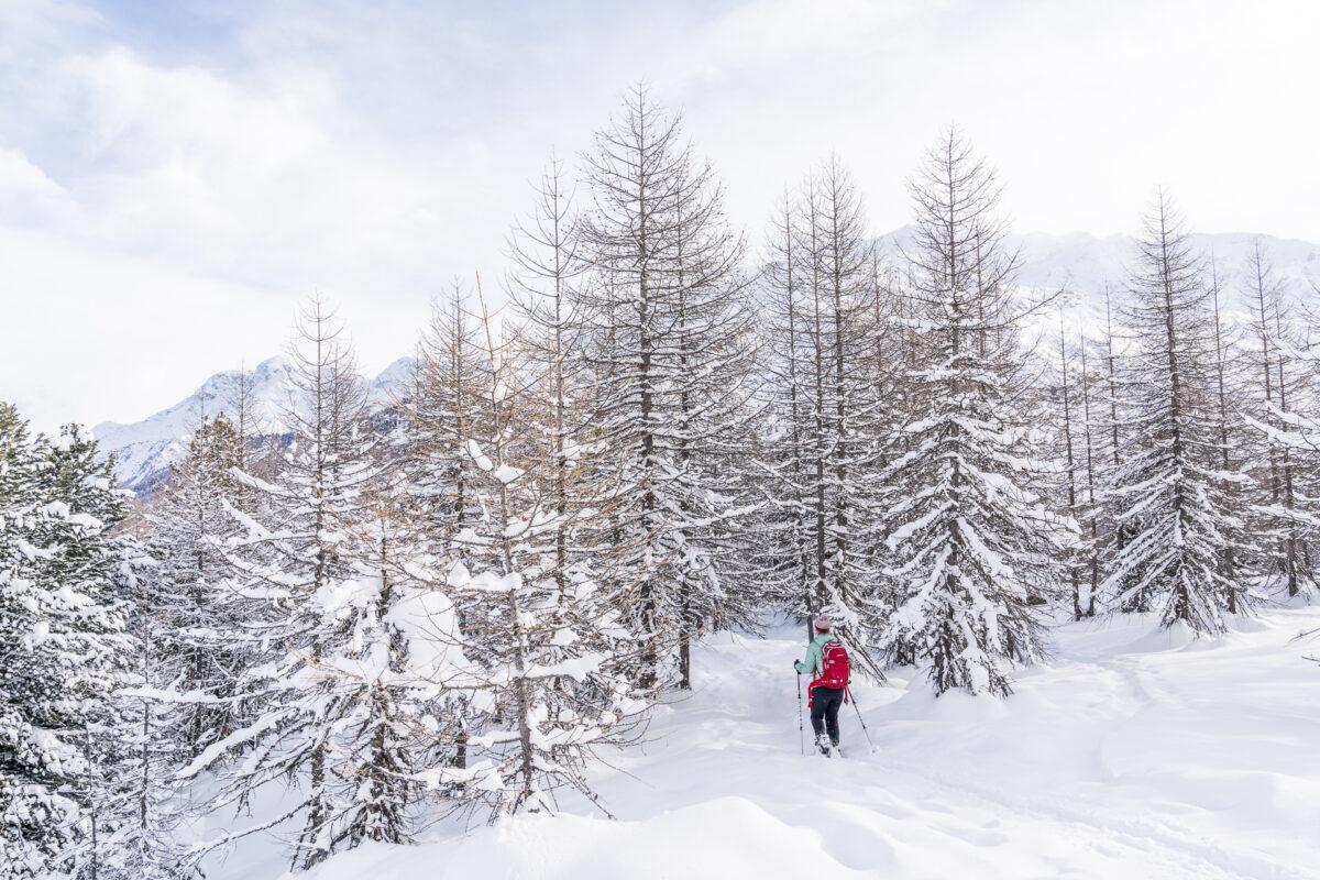Schneeschuhtrail Fex