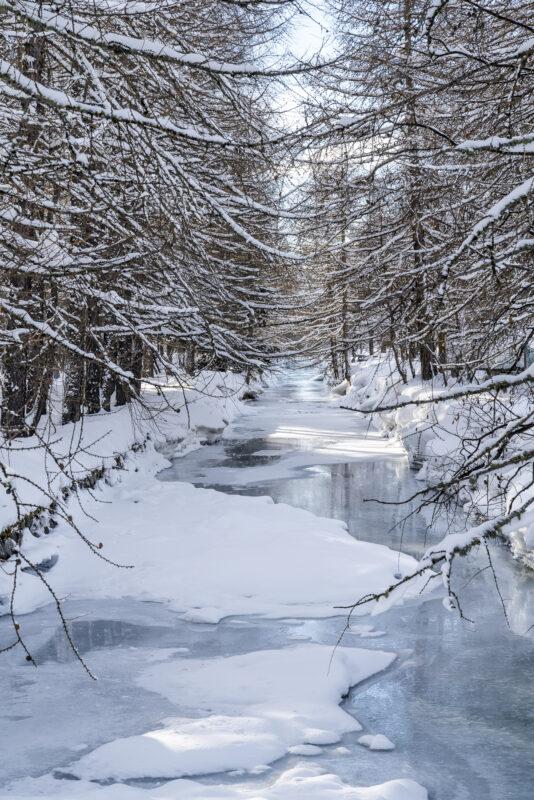 Winter im Engadin Eis