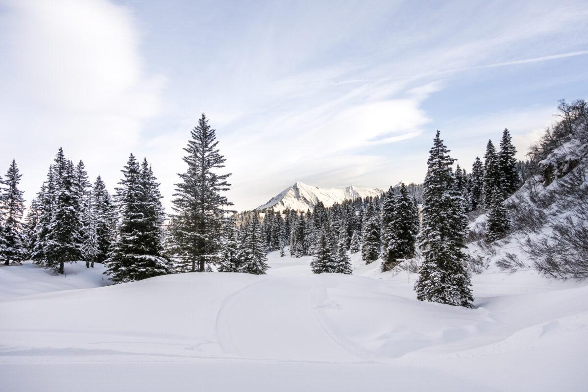 Winterausflugsziel Villars