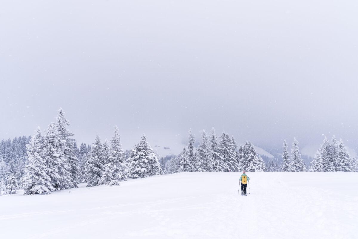 Kronberg Trail Schneeschuh
