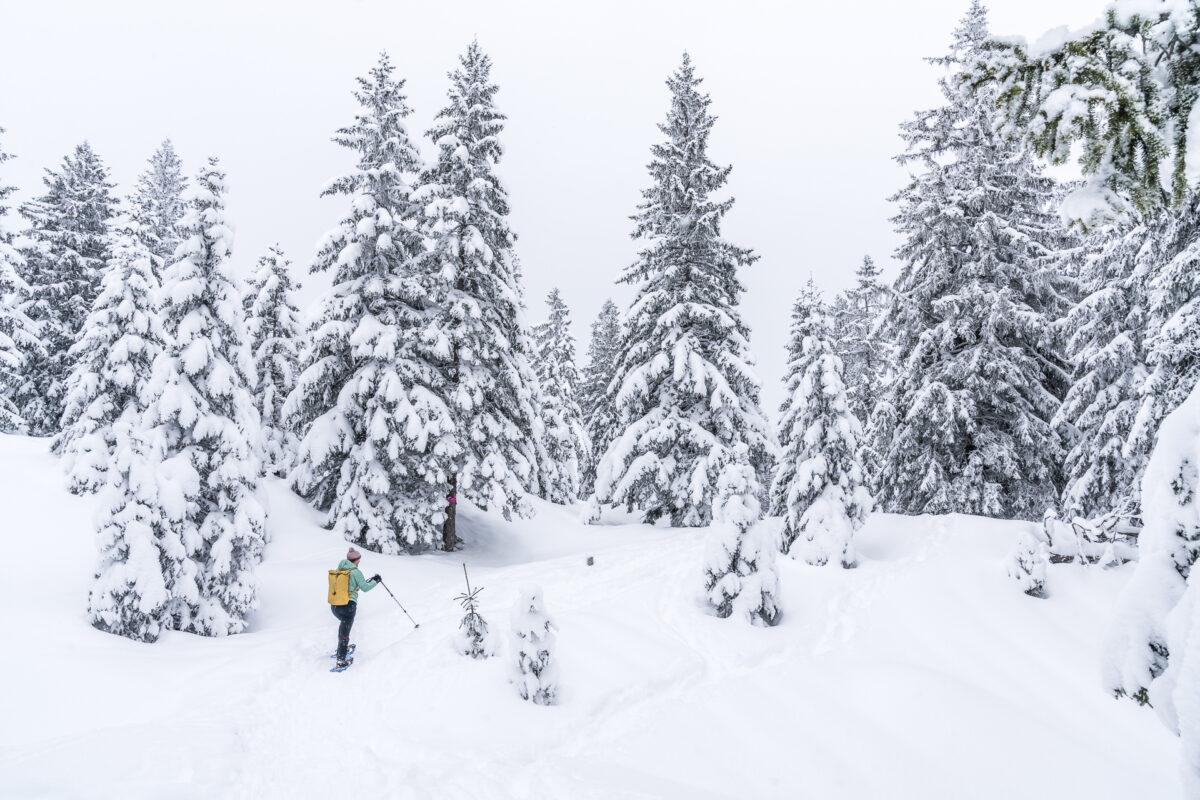 Appenzell Schneeschuhwandern