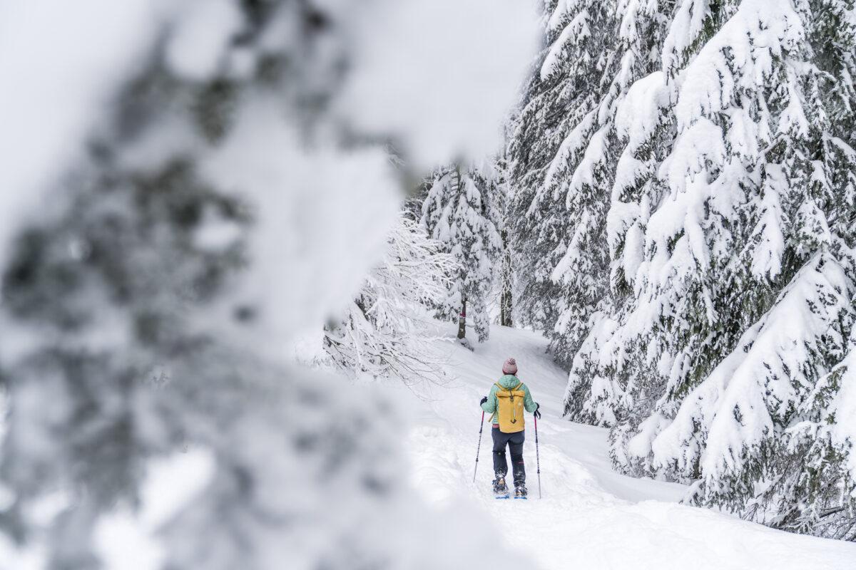 Winterlandschaft Appenzell
