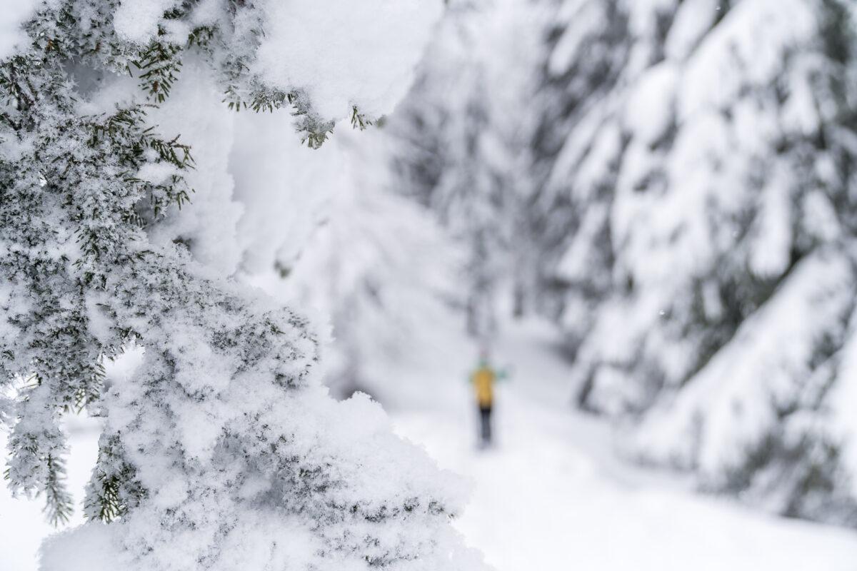 Appenzell Schneeschuh
