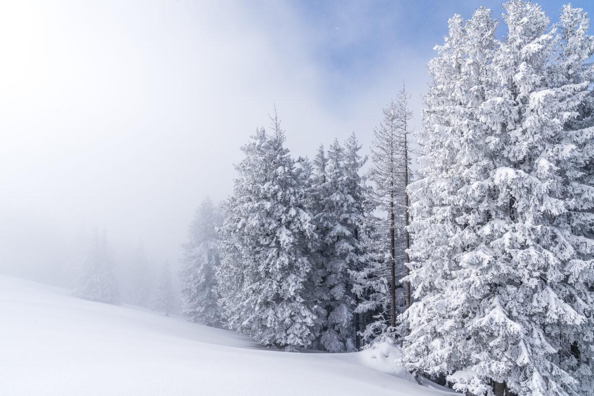 Kronberg Winterlandschaft