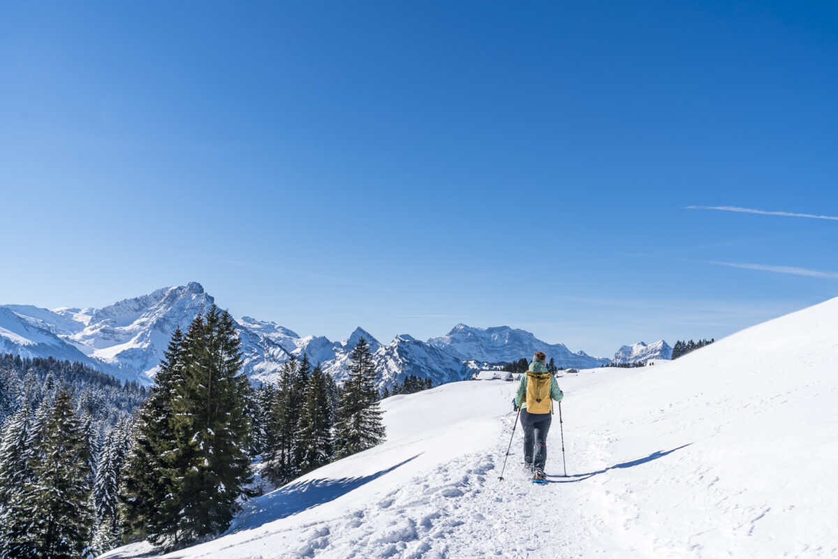 Winterwanderung Arvenbüel