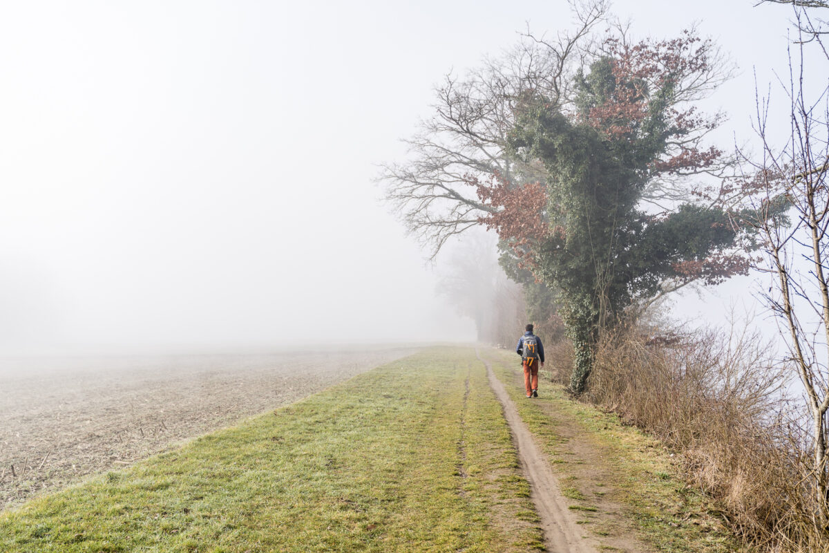 Ellikon am Rhein Nebel
