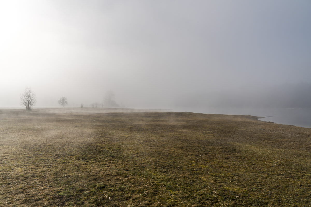 Thurauen Bodennebel
