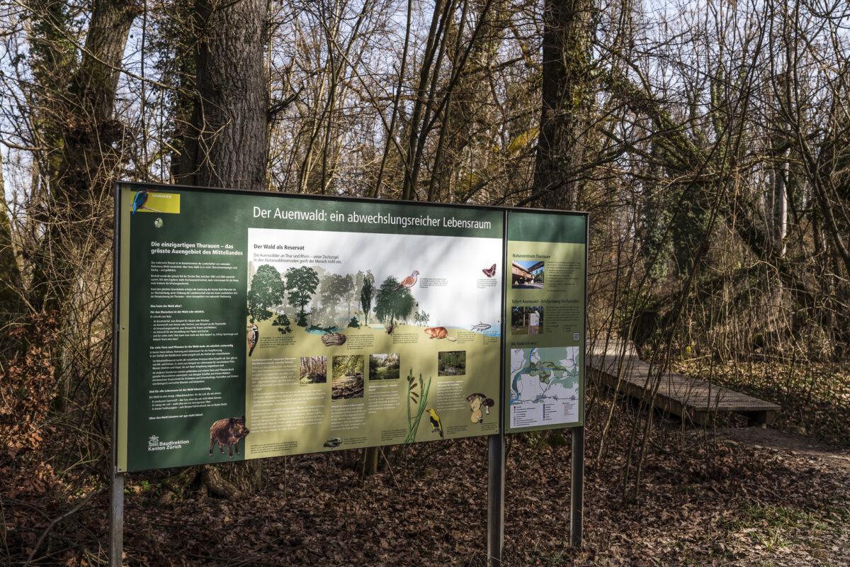 Thurauen Naturschutzgebiet