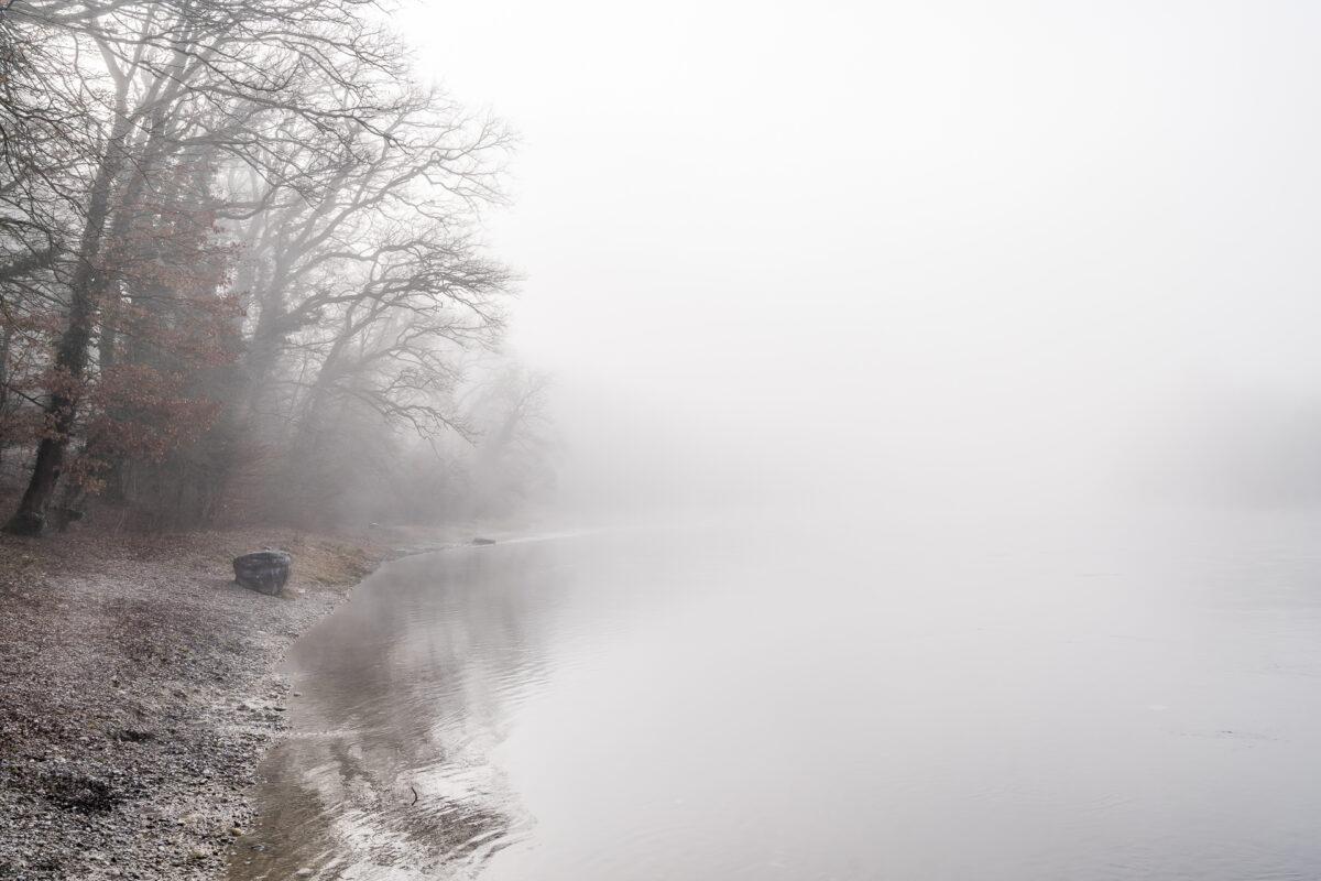 Rhein Nebel