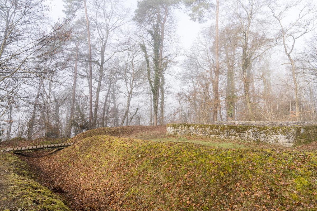 Rheinau Kastell