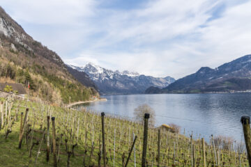 Walenstadt - Quinten - Weesen: 2-Tageswanderung am Walensee