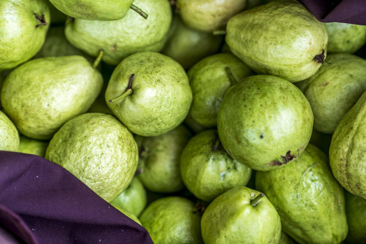 frische Guave