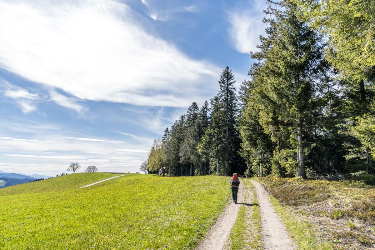 Wanderung Rämisgummen Langnau