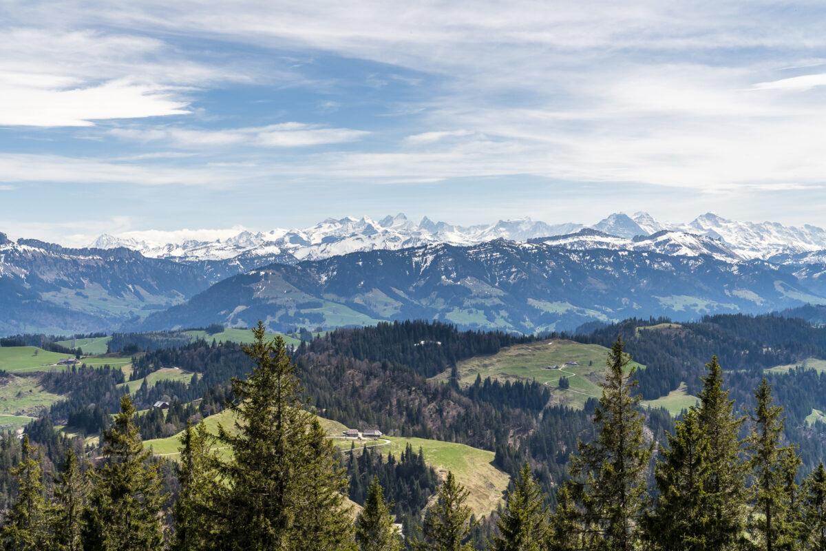 Napf Panorama