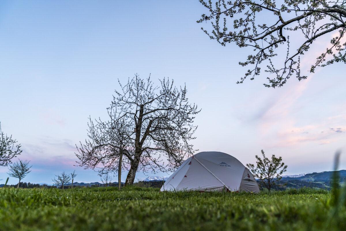 Mittler Gernet Nomady Camp