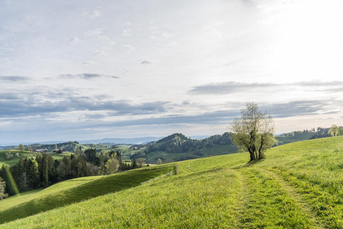Wanderung Lutherntal