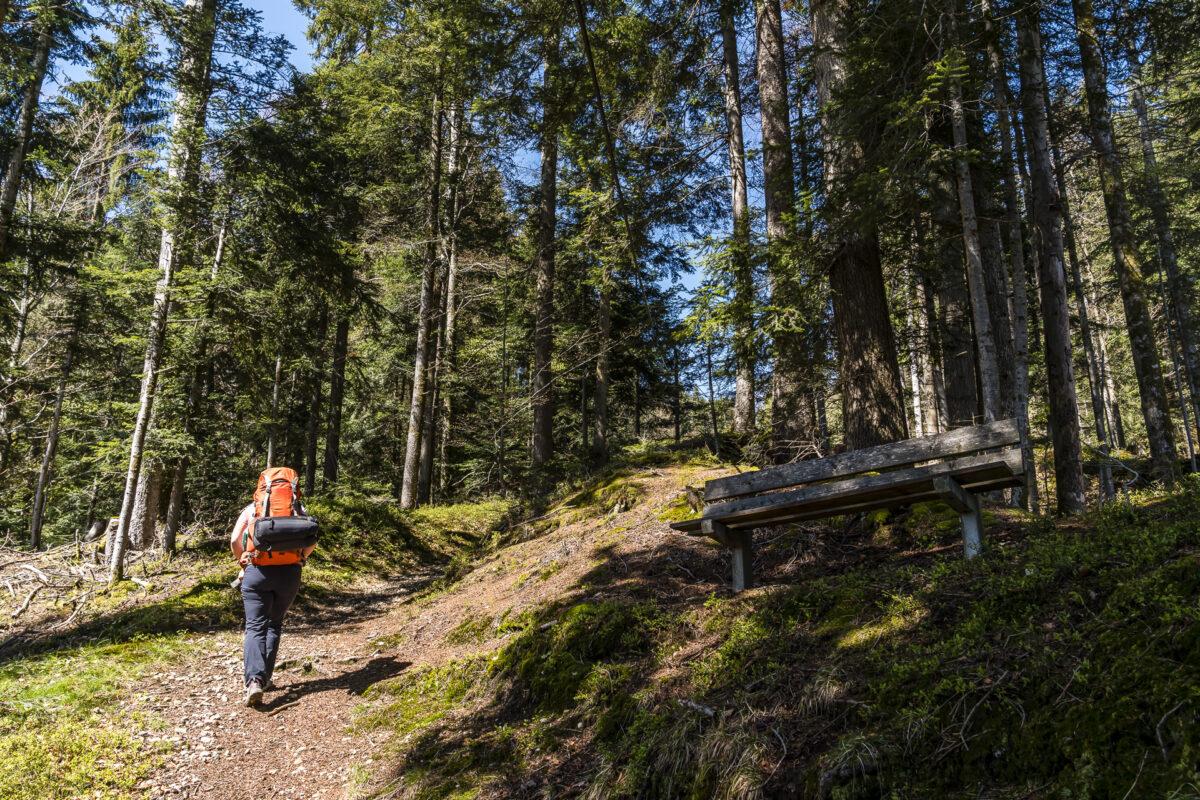 Wanderung Marbach Wachthubel