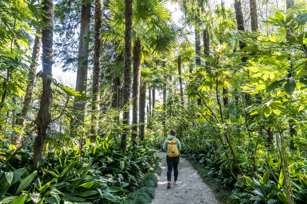 Brissago-Inseln Botanischer Garten