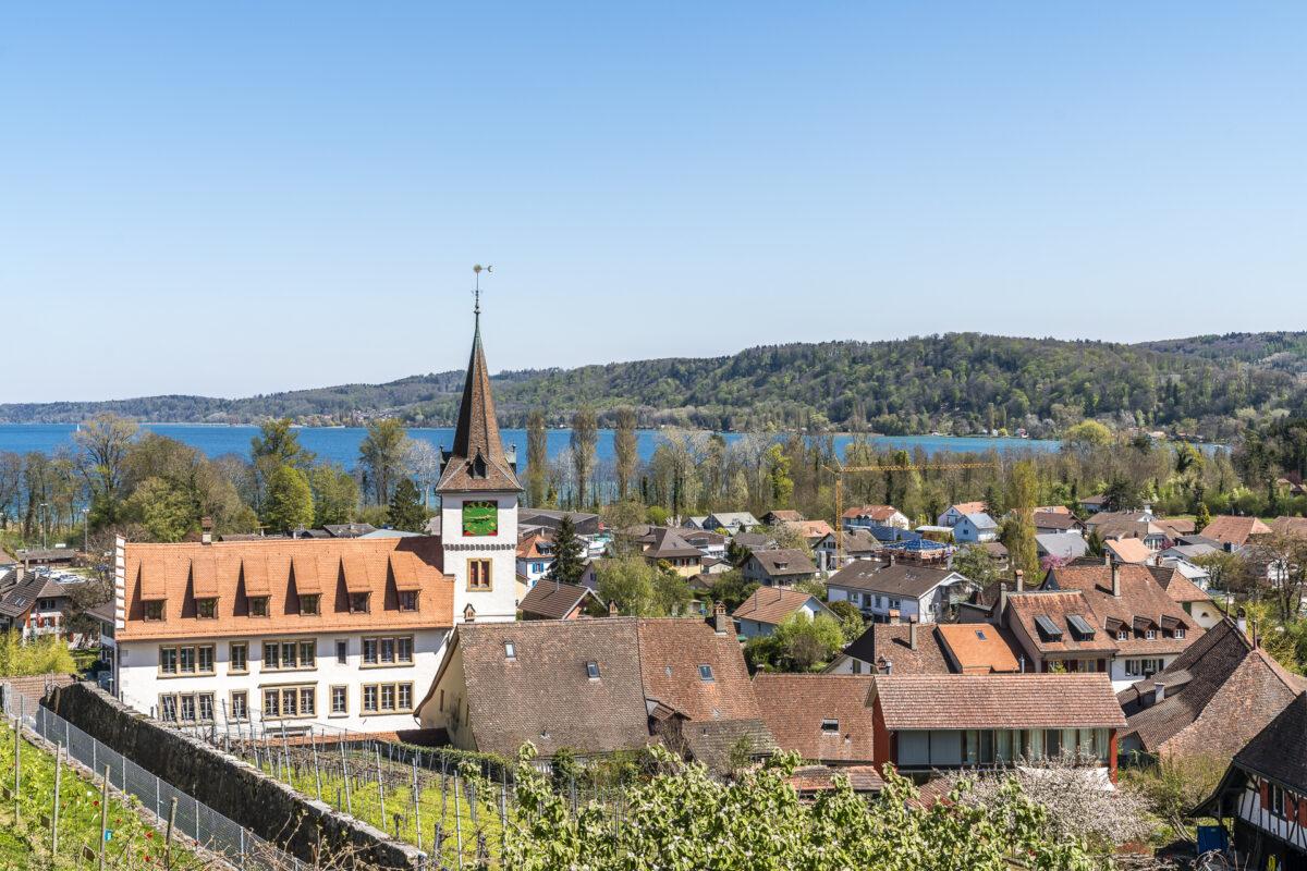 Panorama Schloss Erlach