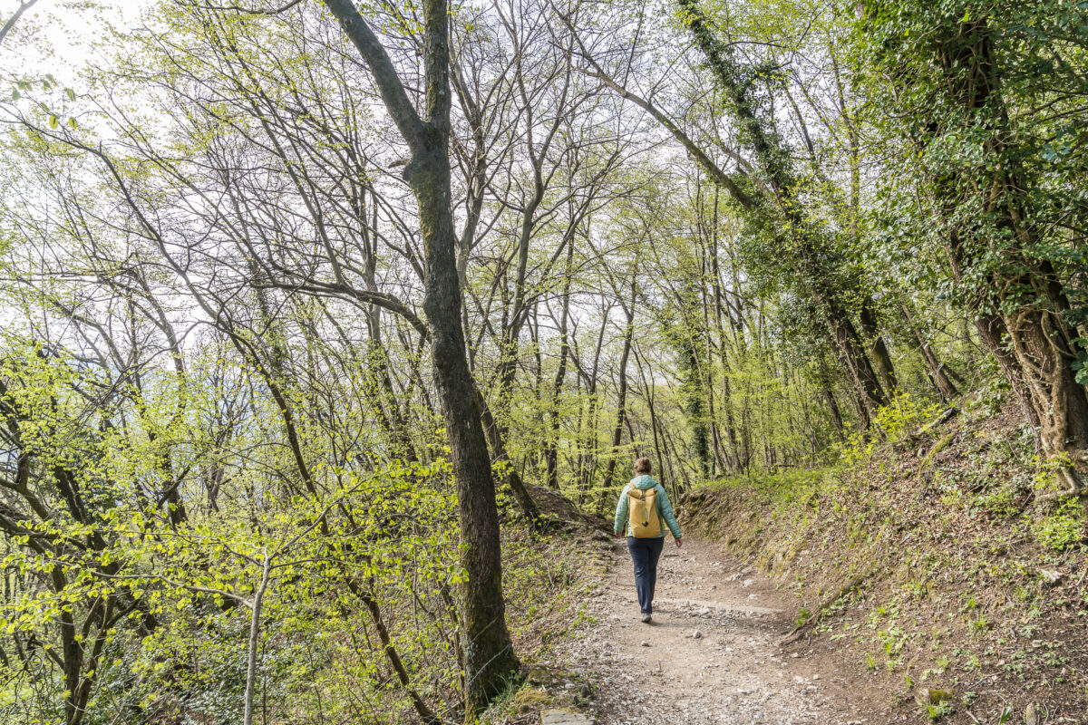 Wanderung San Salvatore