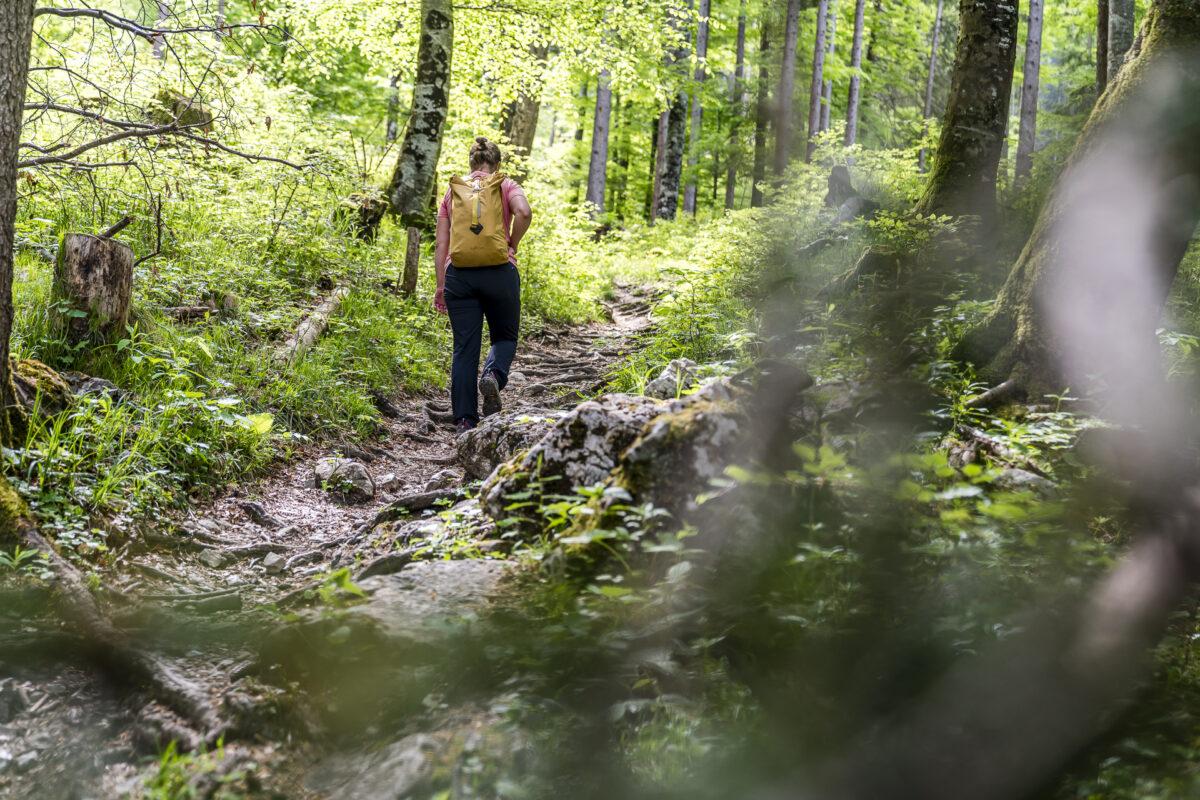 Wanderung Planken - Gafadurahütte
