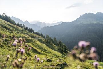Sommerferien in Österreich: 7 Orte für deine Bucket List