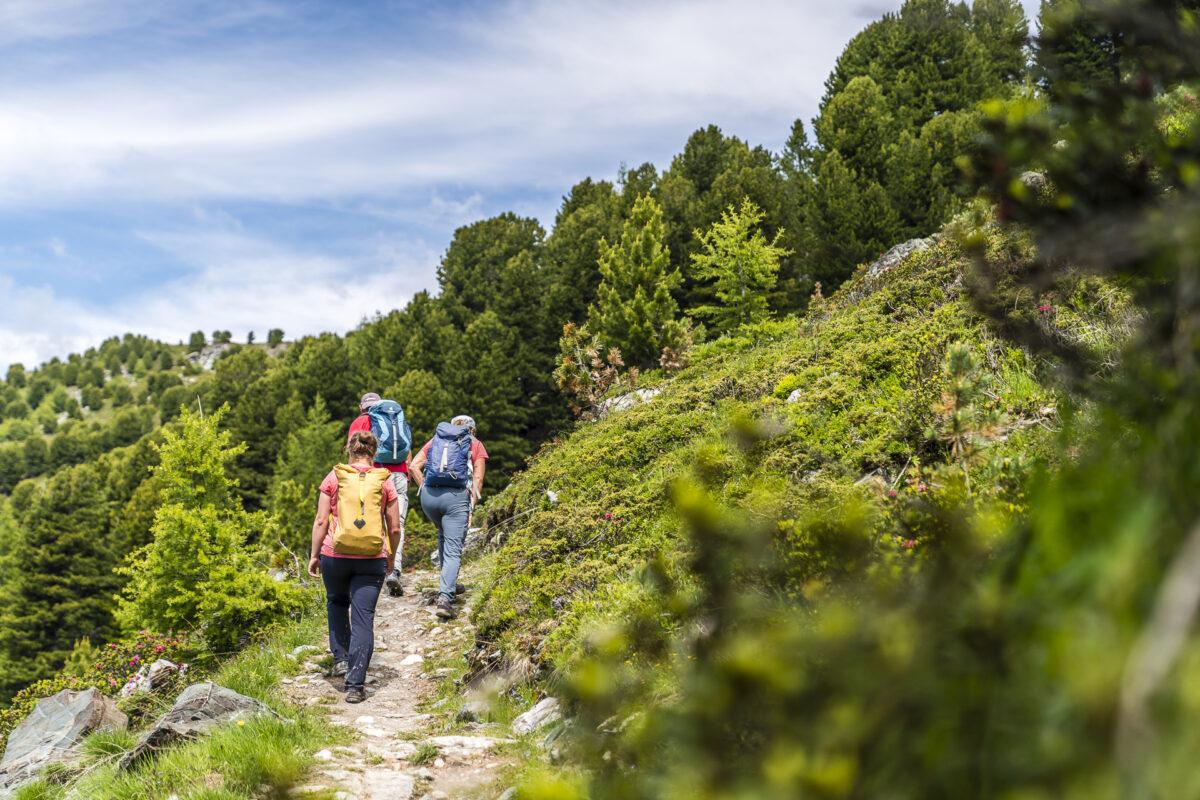 Wandern Crêt du Midi