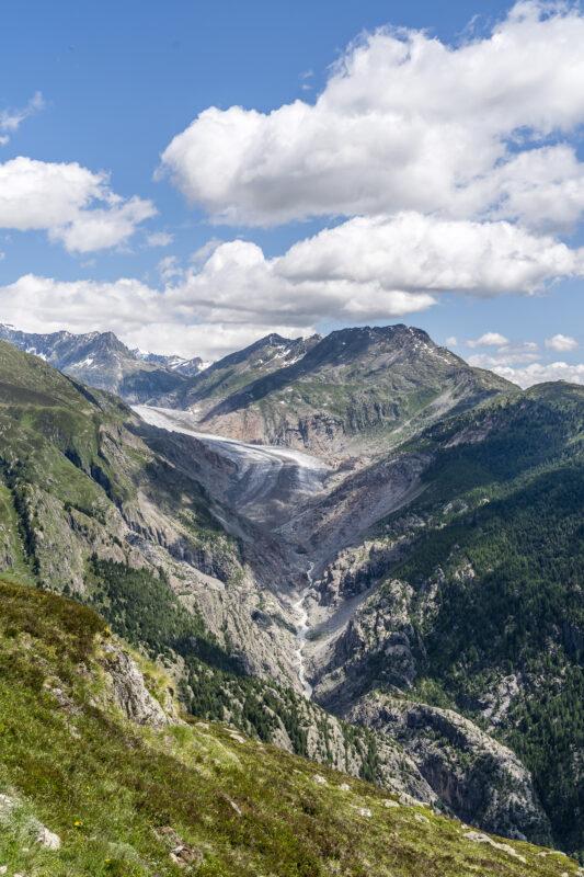 Aletschbord Panorama Alteschgletscher