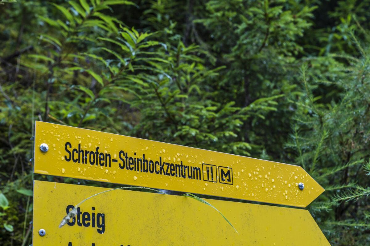 Steinbockzentrum Schrofen