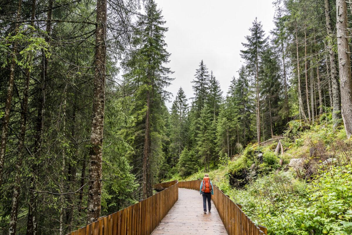 Wanderweg Steinbockzentrum