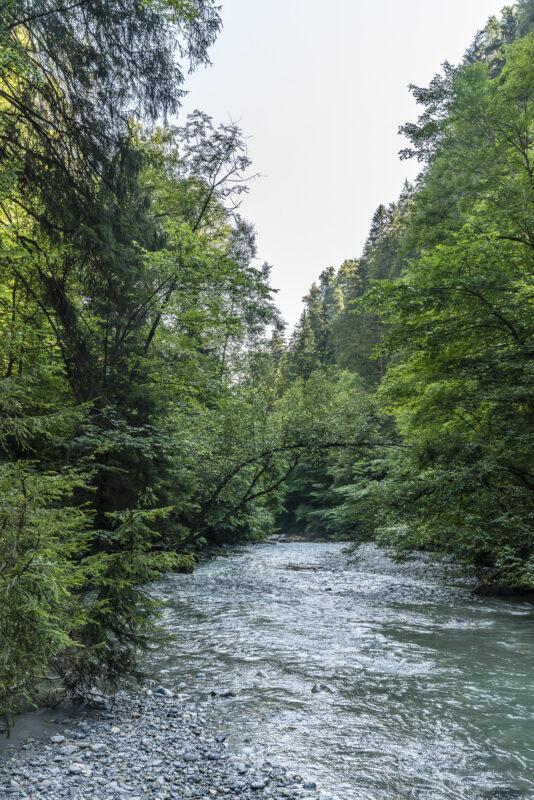 Fluss Pitztal