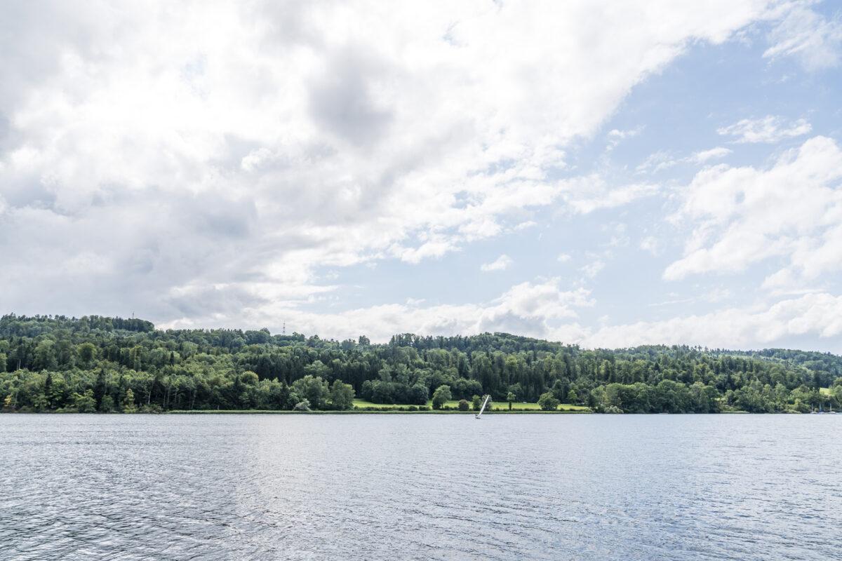 Naturufer Greifensee