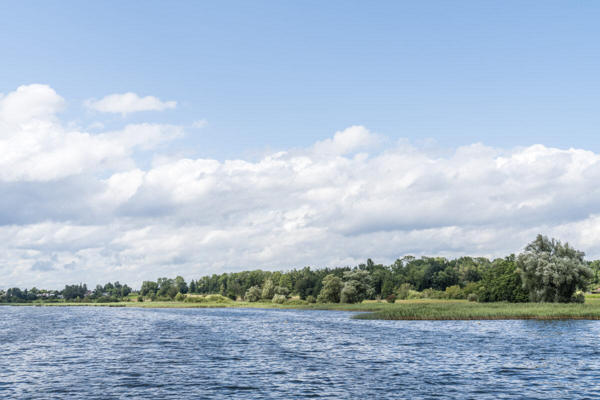 Ufer Greifensee