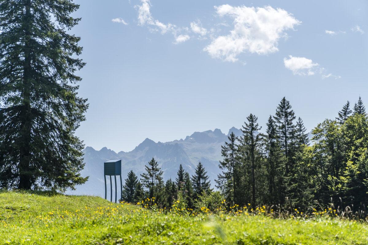Alpine Art Muttersberg Bludenz