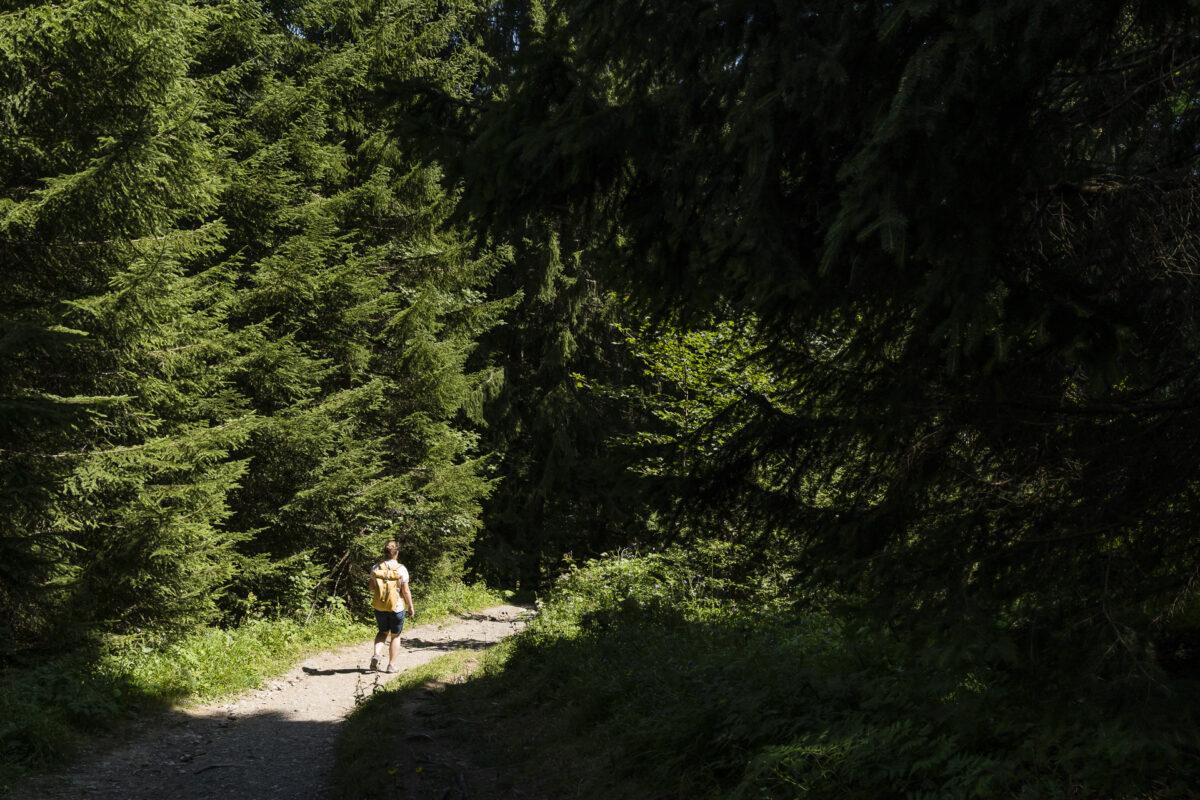 Bludenz Muttersberg Wandern